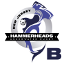hammerheads-b-w